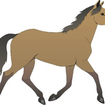 Pferd-3-Stck-21-x-26-cm-gro-wunderschner-Aufkleber-fr-Kinderzimmer-Schule-Arbeitsraum--selbstklebend-auf-Wnden-Fenstern-Spiegeln-Tren-Autos-0