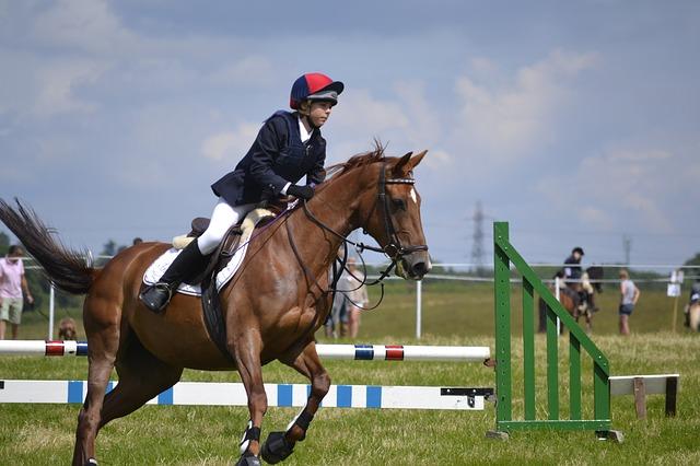 Wie bereiten sich Pferd und Reiter auf ein Springturnier vor?