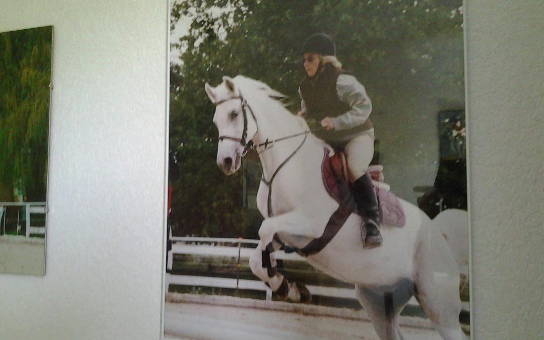 Pferde Foto: Margaretha und AVOLINE – maggy@net2000.ch