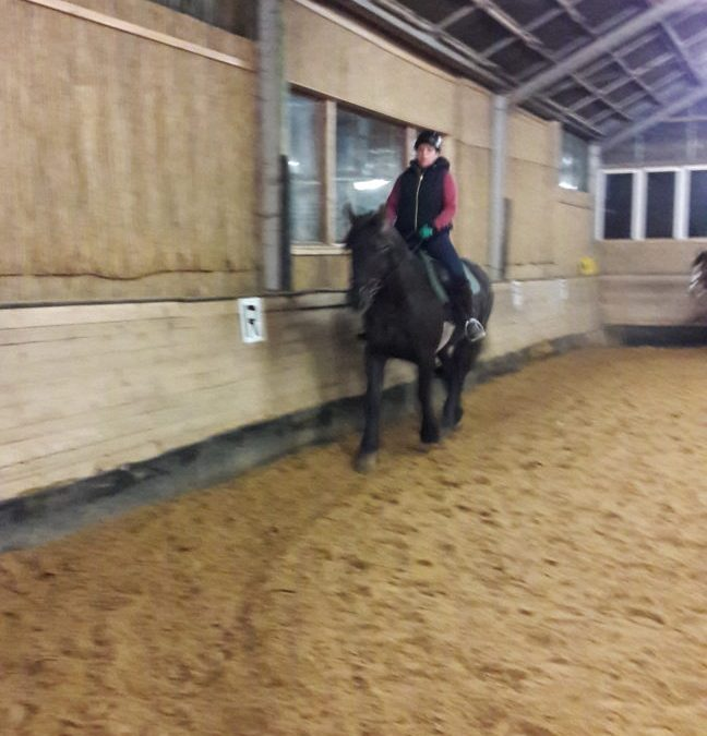 Pferde Foto: Sabrina und Santos – durch die Halle tänzeln!