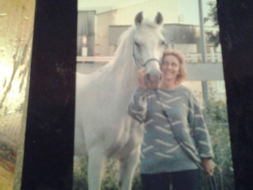Pferde Foto: Margaretha und AVOLINE - une super jument qui est arrivée à l'âge de 35 ans