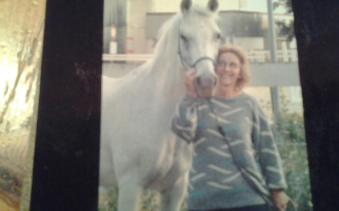 Pferde Foto: Margaretha und AVOLINE – une super jument qui est arrivée à l'âge de 35 ans