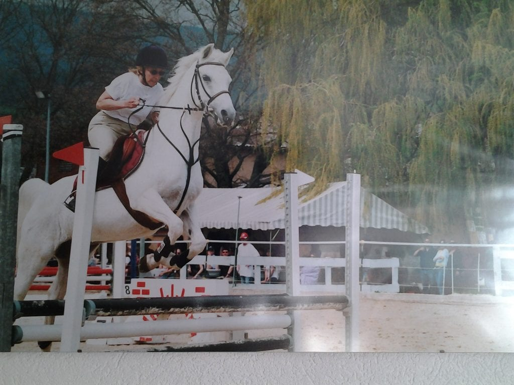 Pferde Foto: Margaretha und AVOLINE - appris à sauter à 60 ans lorsque les autres arrêtent en se moquant de moi merci Avoline