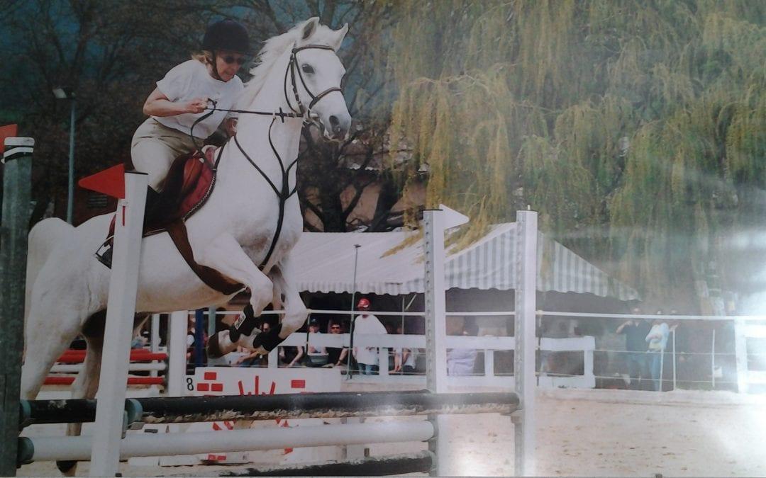 Pferde Foto: Margaretha und AVOLINE – appris à sauter à 60 ans lorsque les autres arrêtent en se moquant de moi merci Avoline